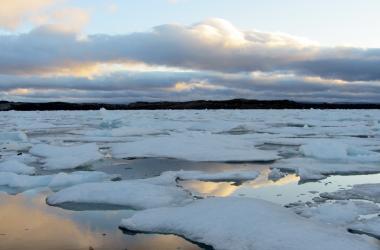 Icebergs by Iqaluit